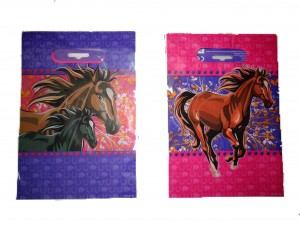 Paard partybag